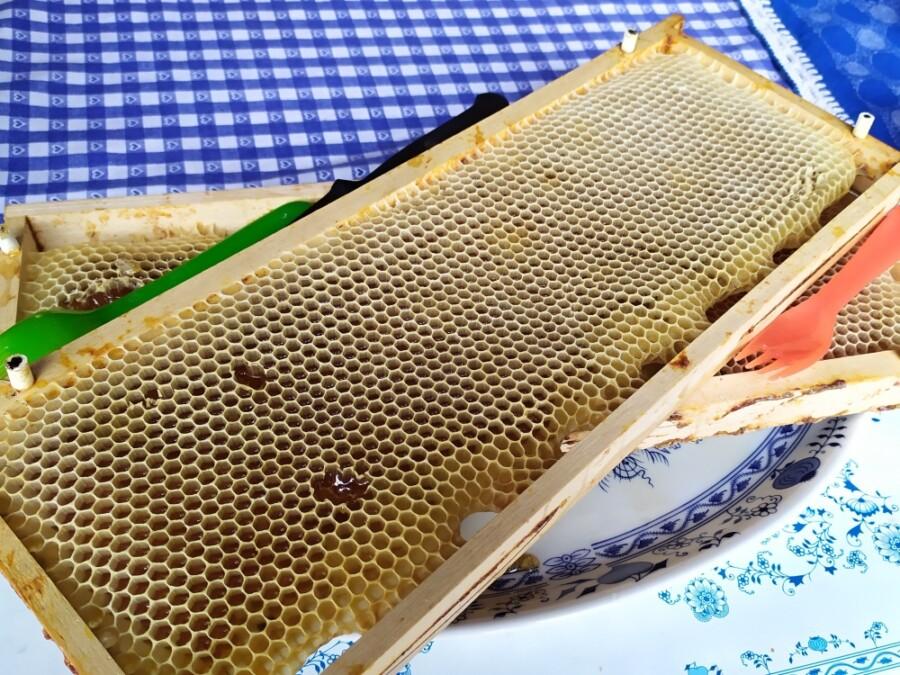 Plást medu, strdí