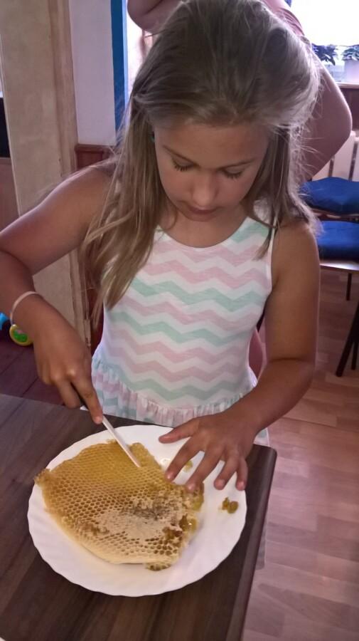 Anička a plástečkový med