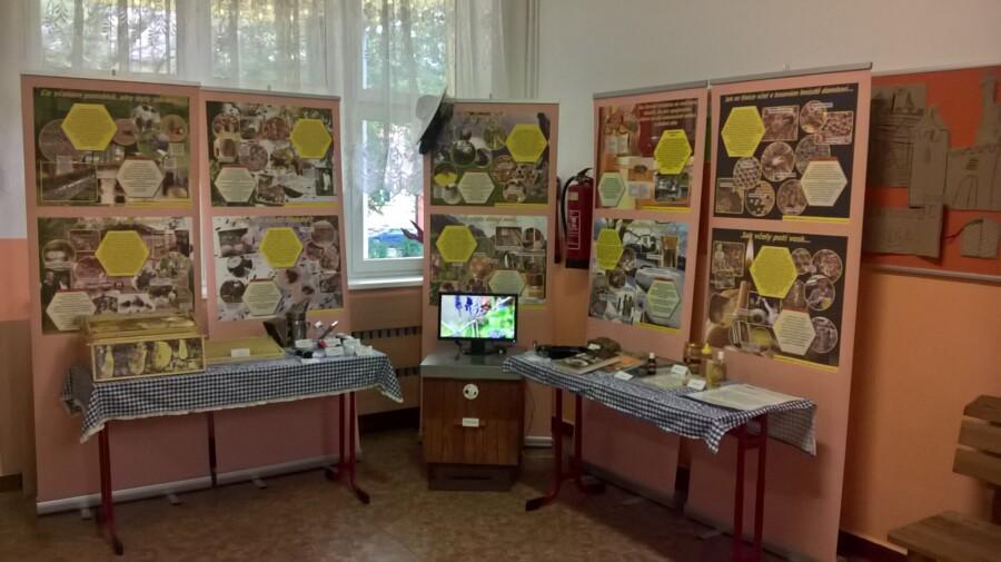 Výstava ZŠ Březinova Ostrava